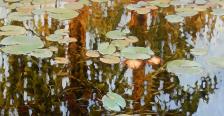 app9011_Olena-Lopatina-Swimming-in-a-Lake-2019.20200624122820.jpg
